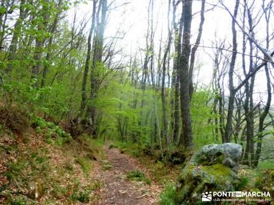 Cañones Ebro, Alto Campoo, Brañosera,Valderredible; excursiones de montaña; excursiones viajes